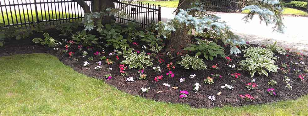 - Spring Clean-Up Silver River Landscaping